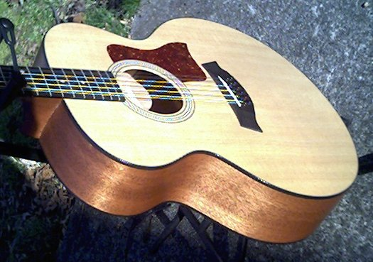 image title is /guitars/Taylor 355 front view 2