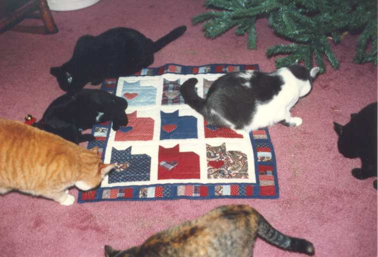 image title is Deb's 15 Cats, 1994